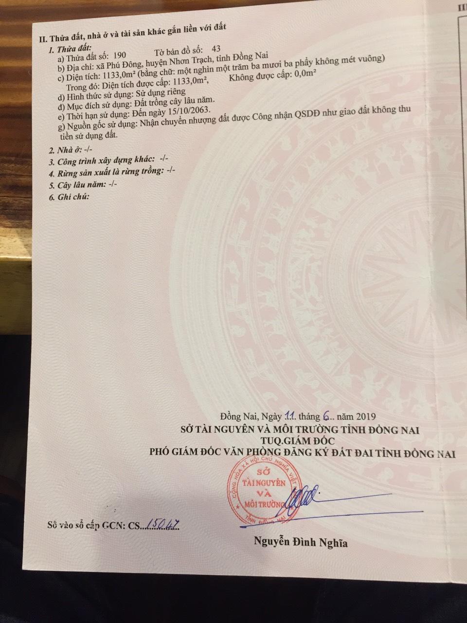 1.133 m2 đất CLN xã Phú Đông – Giá: 1.2 triệu/m2!