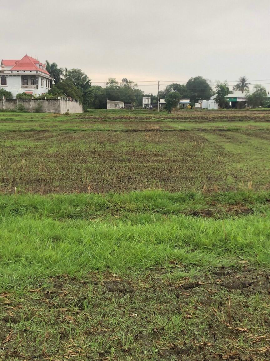 Cần bán 798 m2 đất Lúa xã Vĩnh Thanh – Giá: 1.3 tỷ trọn sổ